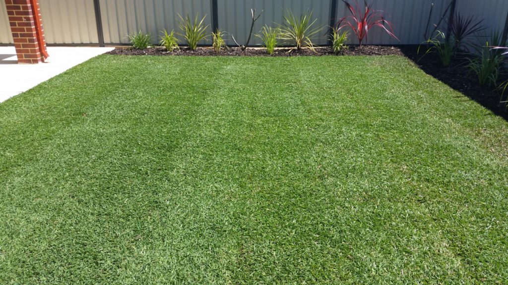 Gardening & Lawn gallery