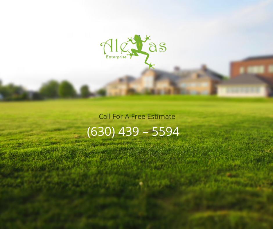 Best lawn mowing aurora-Alexas