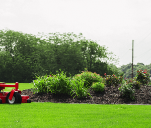 Commercial lawn mowing aurora