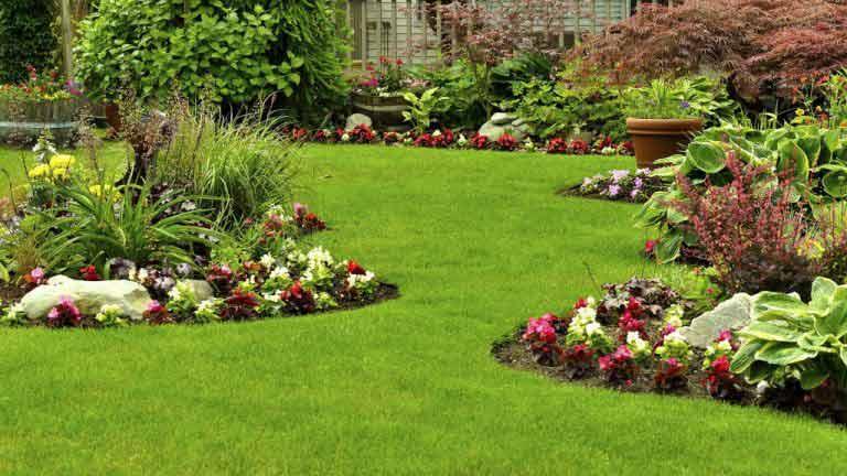 Lawn Care Services Aurora