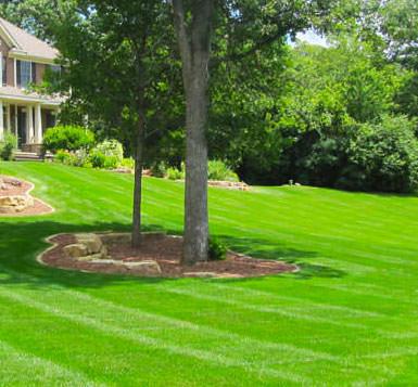 residential landscape service aurora il